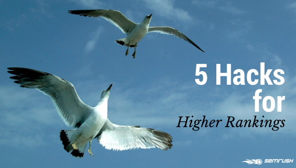5 Hacks for Higher Rankings
