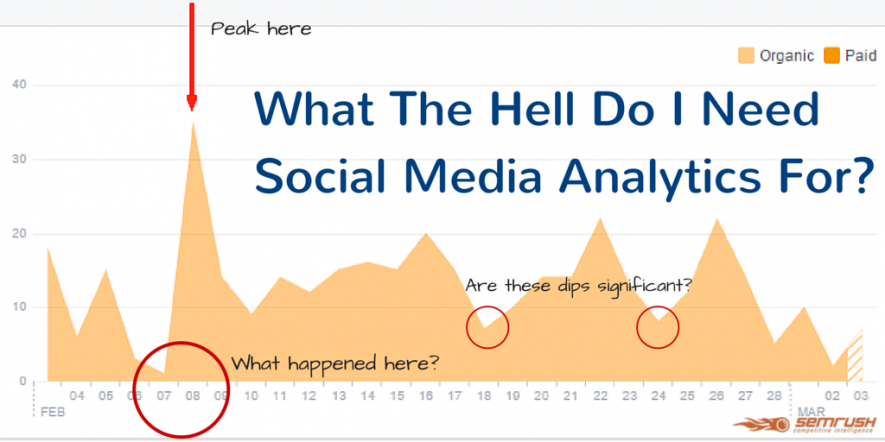 What The Hell Do I Need Social Media Analytics For?