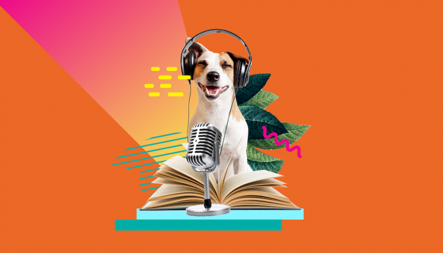 Libri, Newsletter e Blog da leggere + Podcast da ascoltare quest'estate (per webwriter, ma non solo!)
