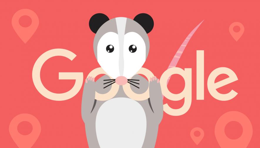 Google Opossum et le SEO local : en quête de pertinence ?