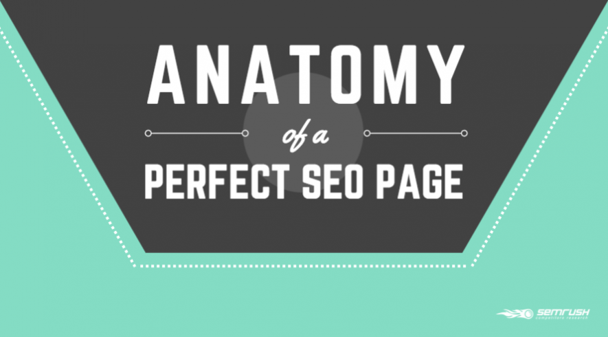 The Anatomy of a Perfect SEO Page
